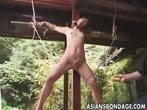 outdoors wife sex