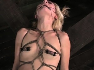 wire cage spread pussy bdsm