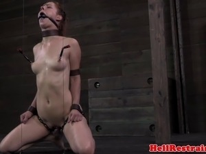 free bdsm shemale sex movie
