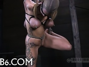 hung black shemales videos