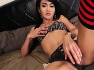 ass fucking shemales ladyboys pics galleries