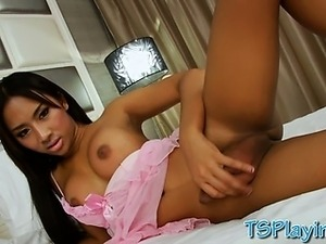 cute young asian ladyboys