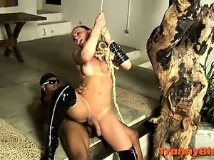 trannie black hung videos
