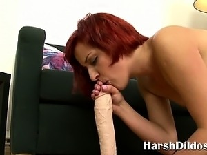 dildo in a pussy