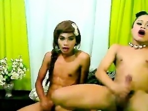 free asian ladyboy guide gallery