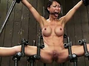 free amateur female ejaculation video