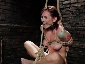 free hardcore bdsm videos