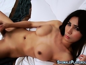 free xxx solo shemale movies