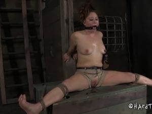 Nice ass bondage slave stripped seductively in femdom BDSM