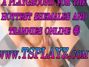 shemale transexual ladyboy daily gallery