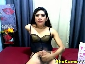 ladyboy shemale galleries teen